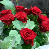 #roses #rosesrouges #passion #amour #love #anniversaire #intaphoto #instamoment #victorhugofleurs